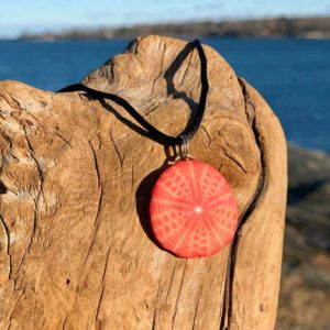 Small Coral Sand Dollar Necklace