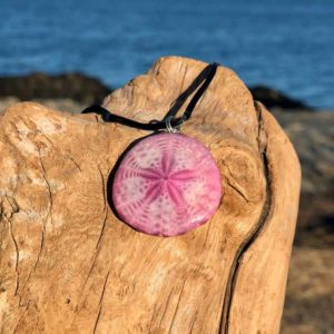 Amaranth Sand Dollar Necklace